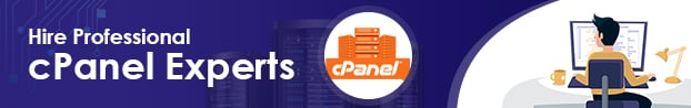 Hire Professional cPanel Experts